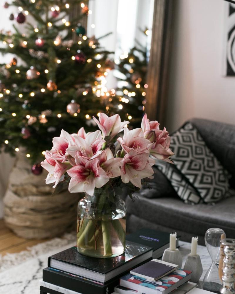 Weihnachtsdeko Zum Essen.Mein Erster Weihnachtsbaum Für Die Wohnung Von Blume2000